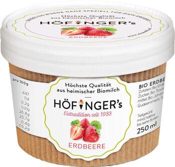 Bio sorbet jahodový vegan Höfingers 250 ml