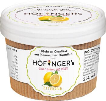 Bio sorbet citrónový vegan Höfingers 250 ml