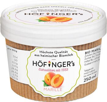 Bio sorbet meruňkový vegan Höfingers 250 ml