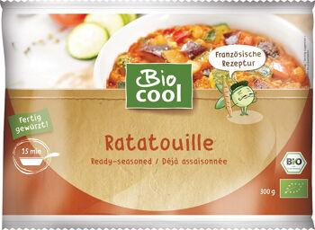 Bio ratatouille mražené BioCool 300 g