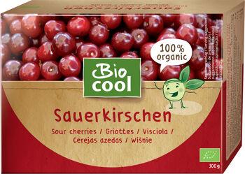 Bio višně mražené BioCool 300 g