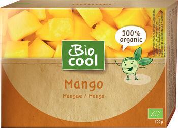 Bio mango mražené BioCool 300 g